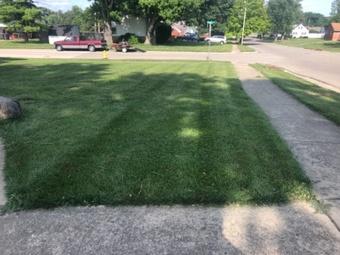 Yard mowing company in Hamilton, OH, 45013
