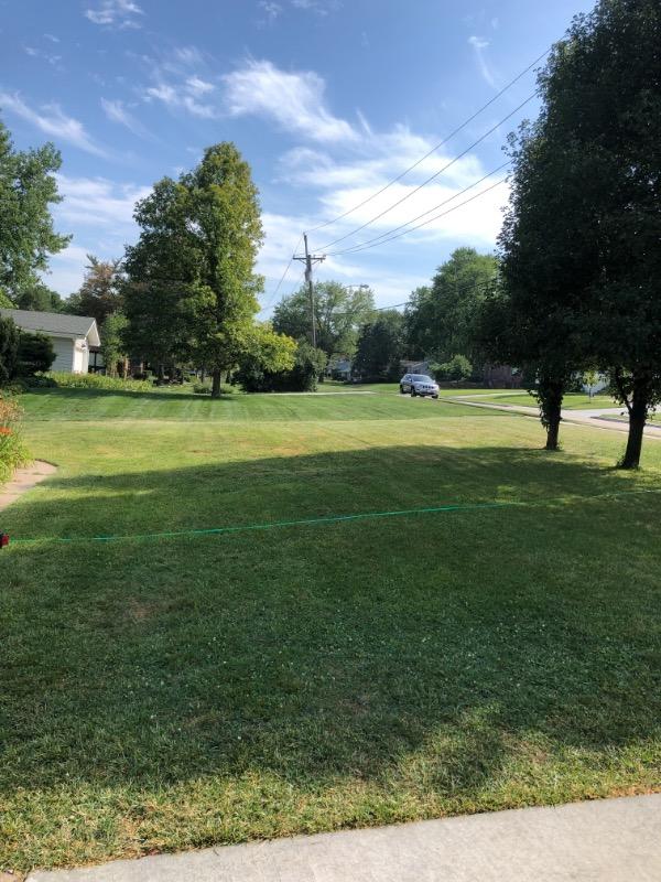 Yard mowing company in Omaha, NE, 68114