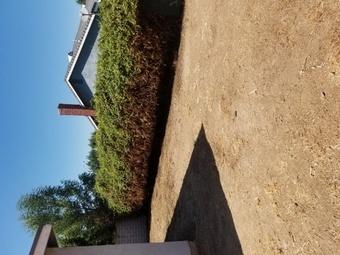 Yard mowing company in Riverside, CA, 92505