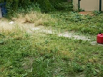 Yard mowing company in Nampa, ID, 83687