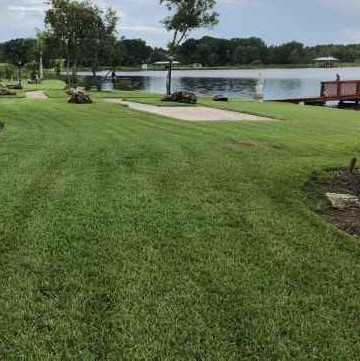 Yard mowing company in Lutz, FL, 33549