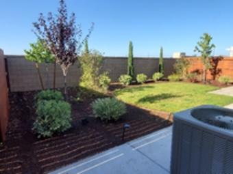 Yard mowing company in Davis, CA, 95618