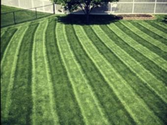 Yard mowing company in Omaha, NE, 68138