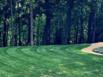 Yard mowing company in Center Line, MI, 48015