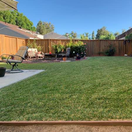 Yard mowing company in Los Angeles, CA, 91320