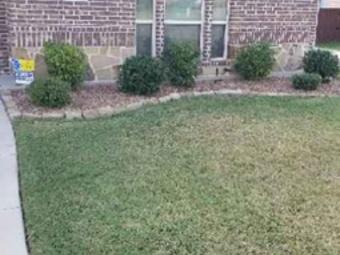 Yard mowing company in Dallas, TX, 75232