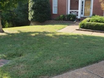 Yard mowing company in Nashville, TN, 37080