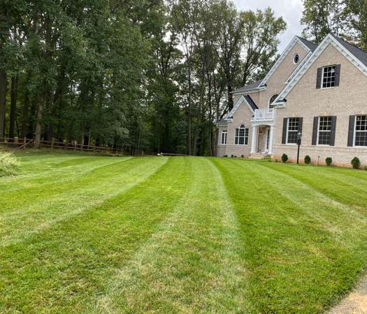 Yard mowing company in Gaithersburg, MD, 20886