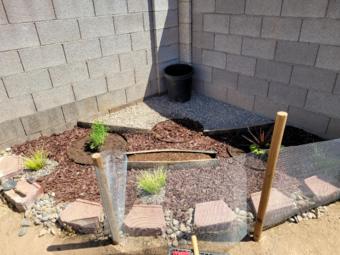 Yard mowing company in Phoenix, AZ, 85033