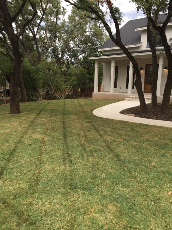 Yard mowing company in Cedar Park, TX, 78613