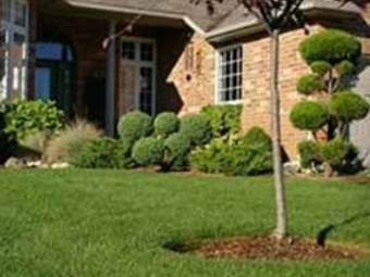 Yard mowing company in Knoxville, TN, 37921