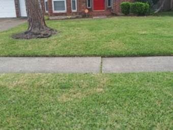 Yard mowing company in Houston, TX, 77022