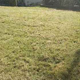 Yard mowing company in Gainesville, GA, 30040