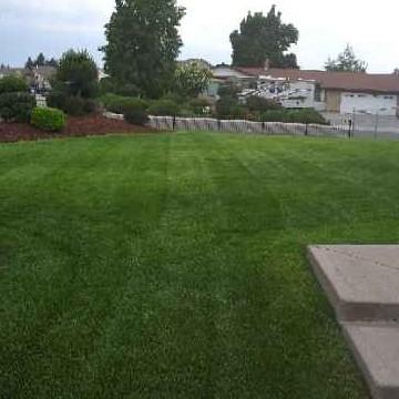 Yard mowing company in Spokane, WA, 99205