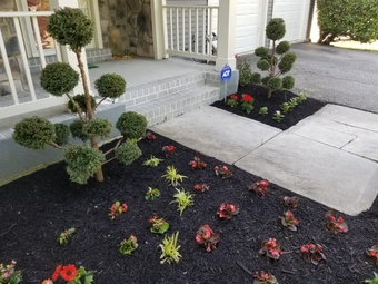 Yard mowing company in Suitland Silver Hill, MD, 20746