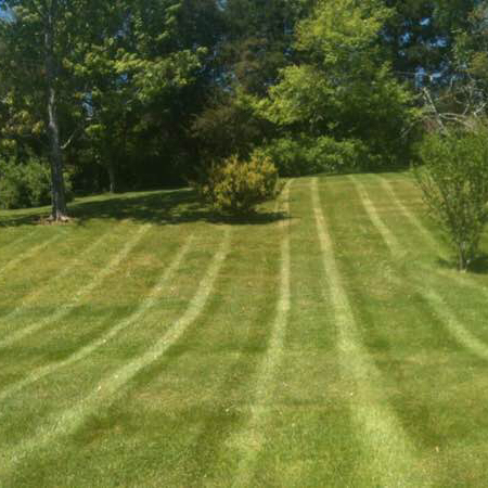 Yard mowing company in Knoxville, TN, 37931