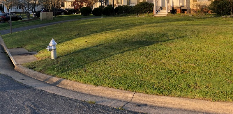 Yard mowing company in Richmond, VA, 23059