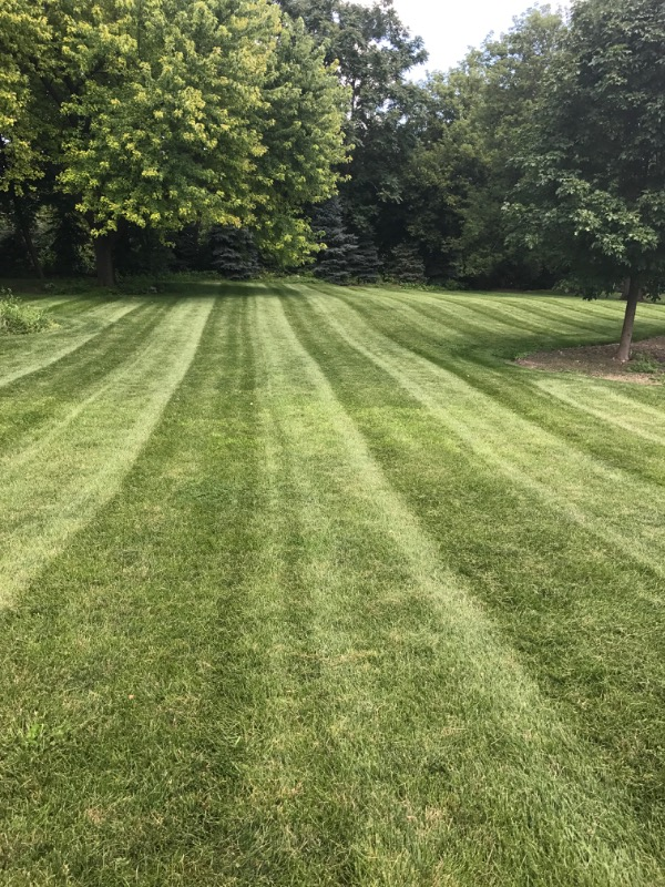 Yard mowing company in Clover, SC, 29710