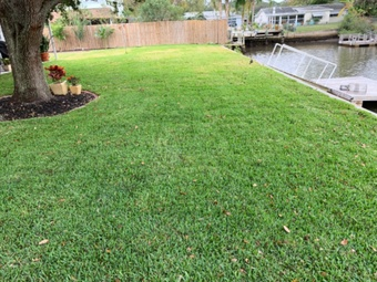 Yard mowing company in Port Richey, FL, 34668