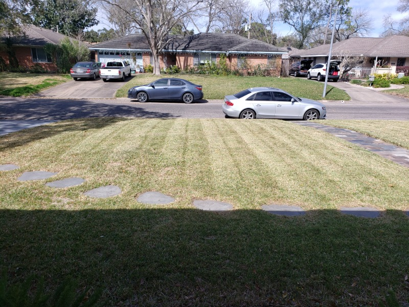 Yard mowing company in Spring, TX, 77338