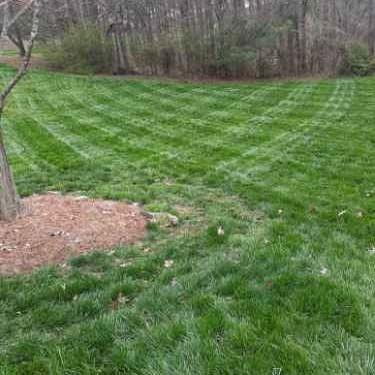 Yard mowing company in Sugar Hill, GA, 30518