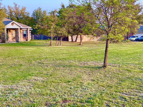Yard mowing company in Killeen, TX, 76543