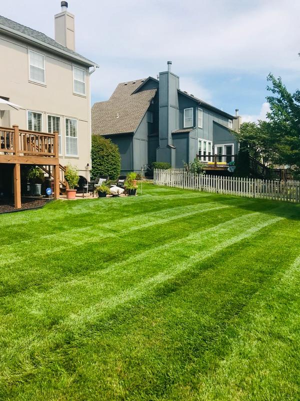 Yard mowing company in Olathe, KS, 66061