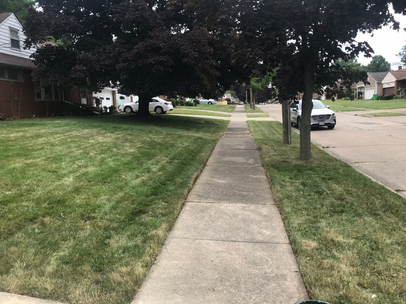 Yard mowing company in Richmond Heights, OH, 44143