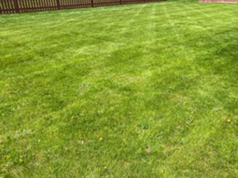 Yard mowing company in Indianapolis, IN, 46037
