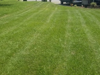 Yard mowing company in Pensacola, FL, 32505