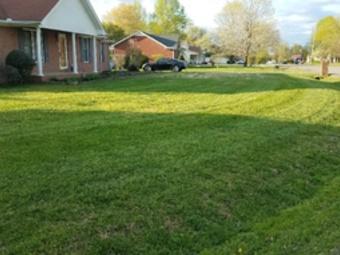 Yard mowing company in Murfreesboro, TN, 37129