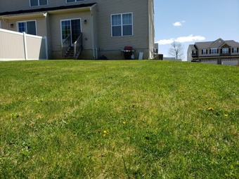 Yard mowing company in Macungie, PA, 18062