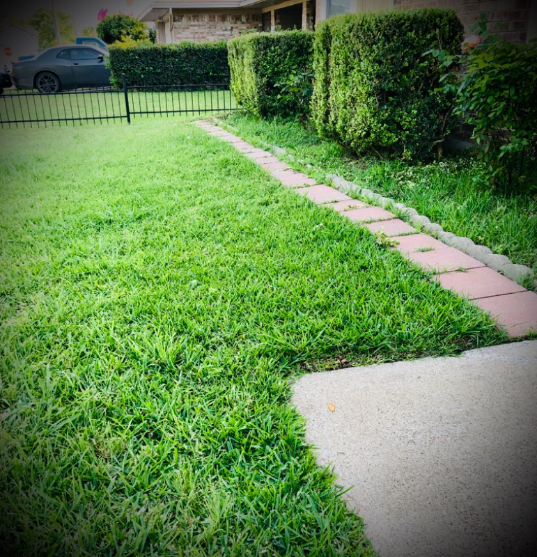 Yard mowing company in Irving , TX, 75061