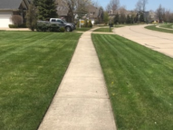 Yard mowing company in Lakewood, OH, 44012
