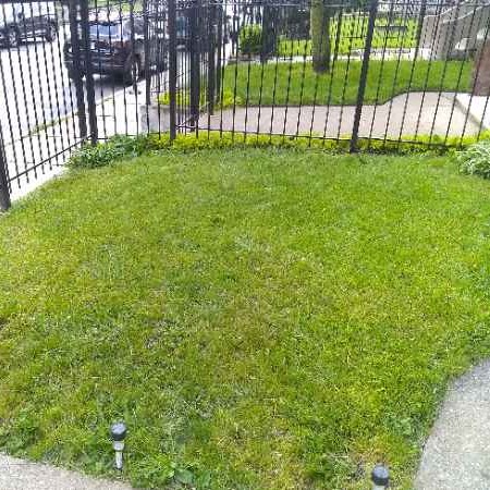 Yard mowing company in Chicago, IL, 60607