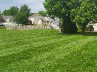 Yard mowing company in St. Louis, MO, 63129
