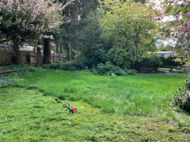 Yard mowing company in Seattle, WA, 98115