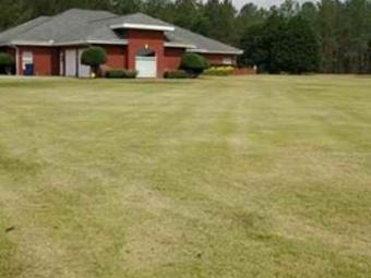 Yard mowing company in Dothan, AL, 36301