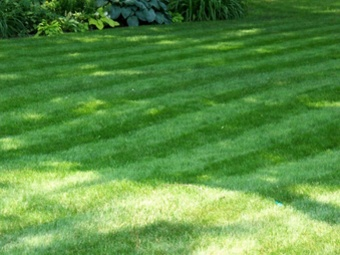 Yard mowing company in Grover, NC, 28073