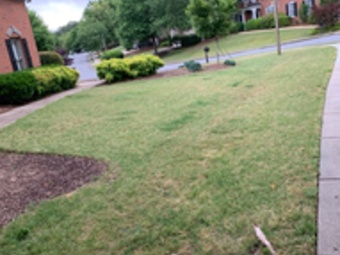 Yard mowing company in Holly Springs, GA, 30115