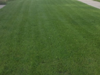 Yard mowing company in Brown Deer, WI, 53209