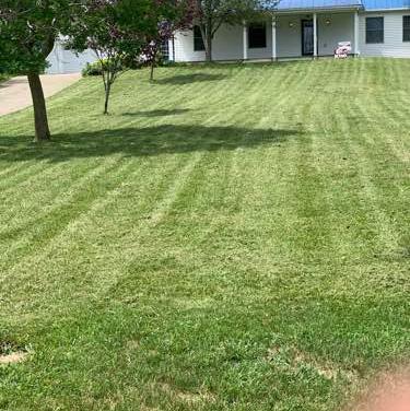 Yard mowing company in Louisville, KY, 40299