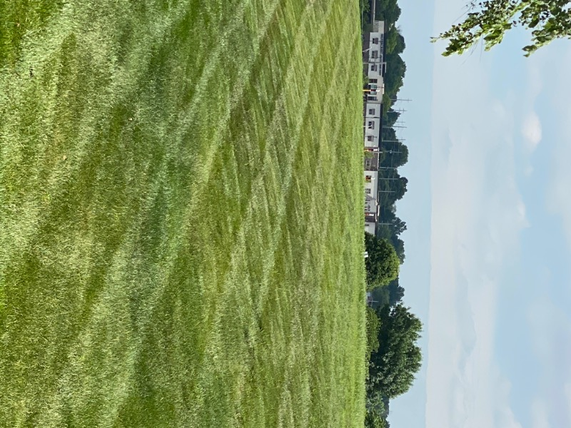 Yard mowing company in Independence, MO, 64056