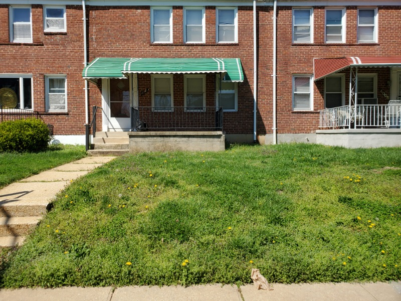 Yard mowing company in Parkville, MD, 21234