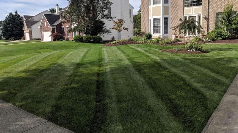 Yard mowing company in Lincoln, NE, 68521