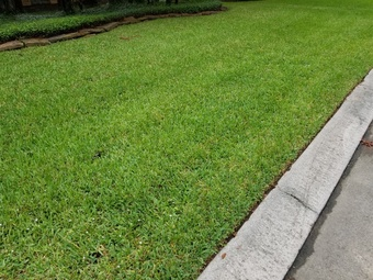 Yard mowing company in The Woodlands, TX, 77381