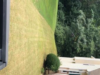Yard mowing company in Temple, GA, 30179