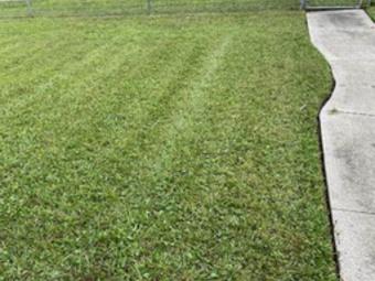 Yard mowing company in Deltona, FL, 32738