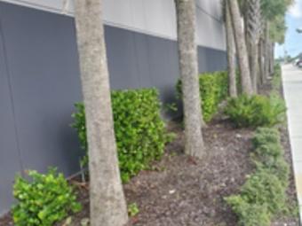 Yard mowing company in Miami Gardens, FL, 33169