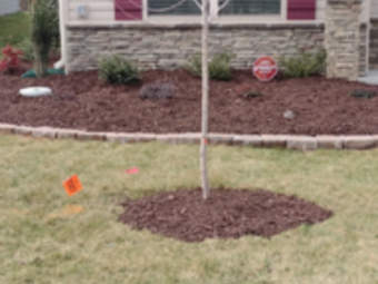 Yard mowing company in Kernersville, NC, 27284